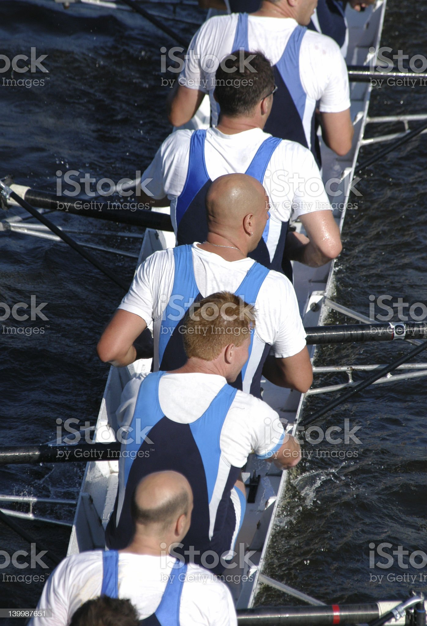 Rowing Team royalty-free stock photo