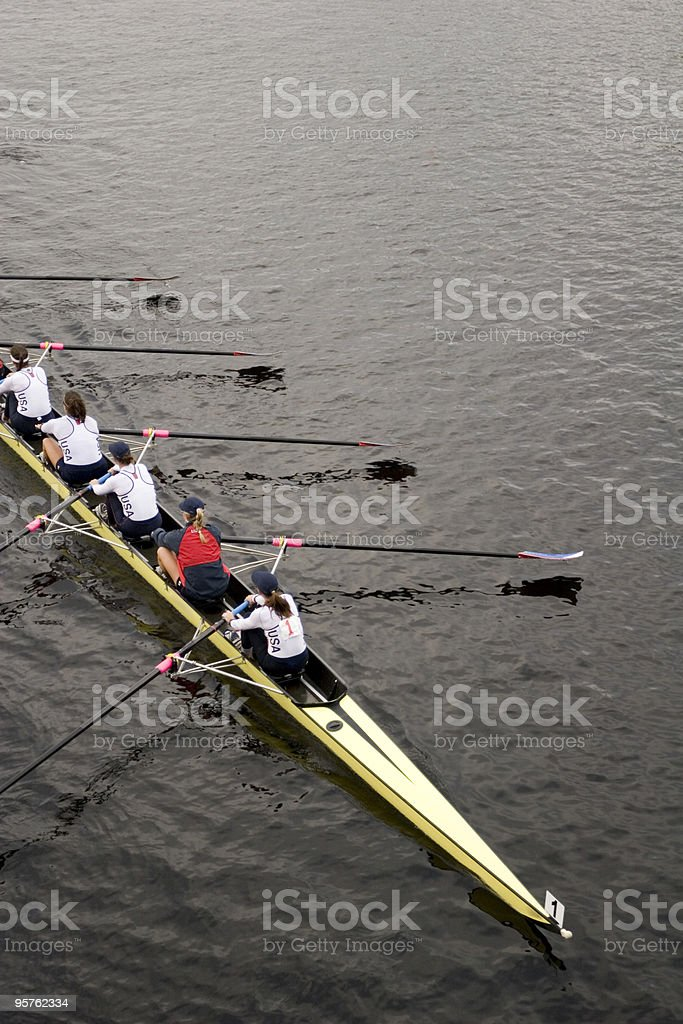 Rowing Team Rowing on Charles River in Boston stock photo
