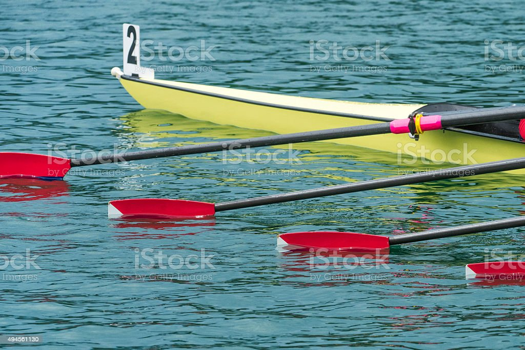 Rowing Team With Four Oars Waiting on the Starting Line stock photo