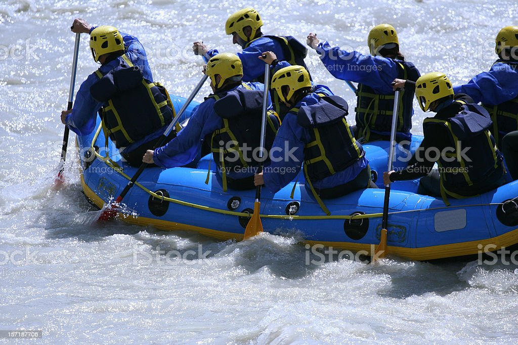 Rowing together royalty-free stock photo