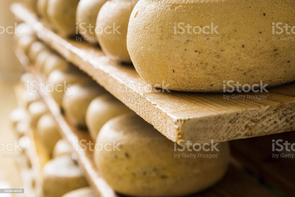 Rows of cheeses on wooden shelves stock photo