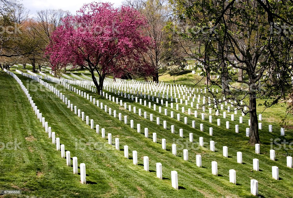 Rows of gravestones in Arlington National Cemetery royalty-free stock photo