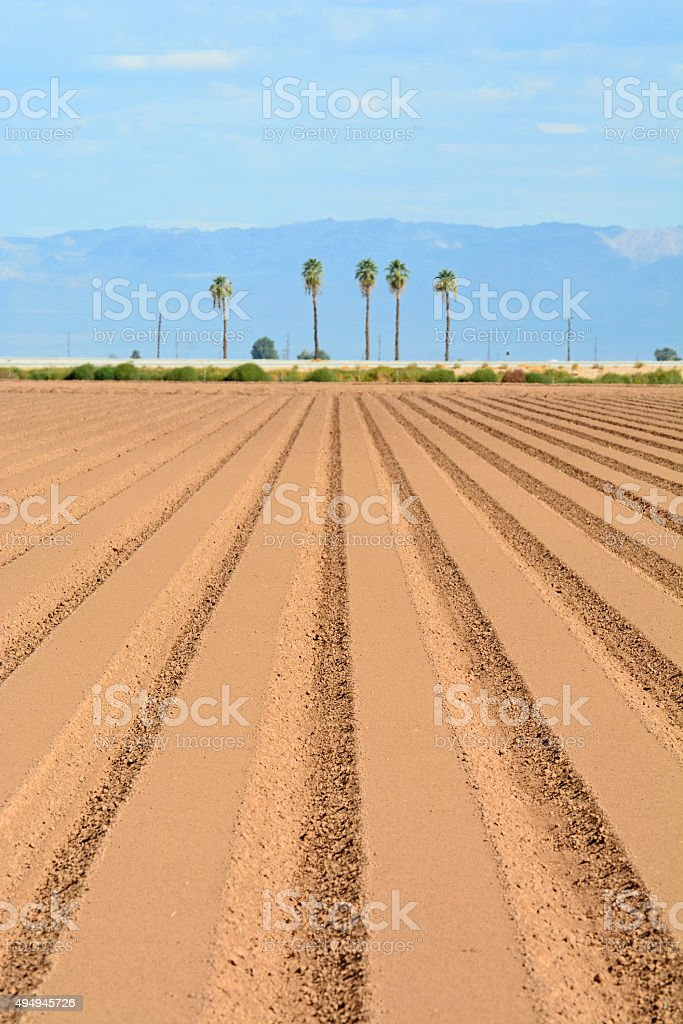 Rows of Prepared Soil in California stock photo