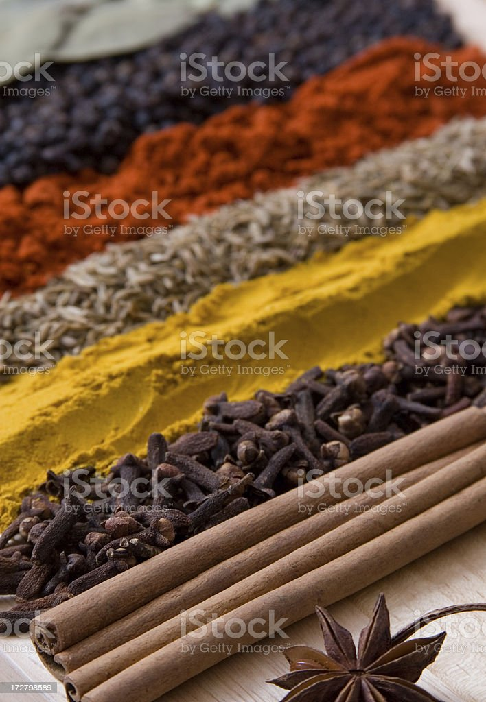 Rows of spices 2 royalty-free stock photo
