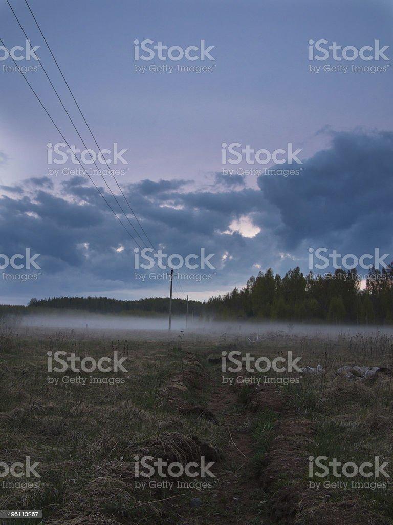 Rows of telegraph poles royalty-free stock photo