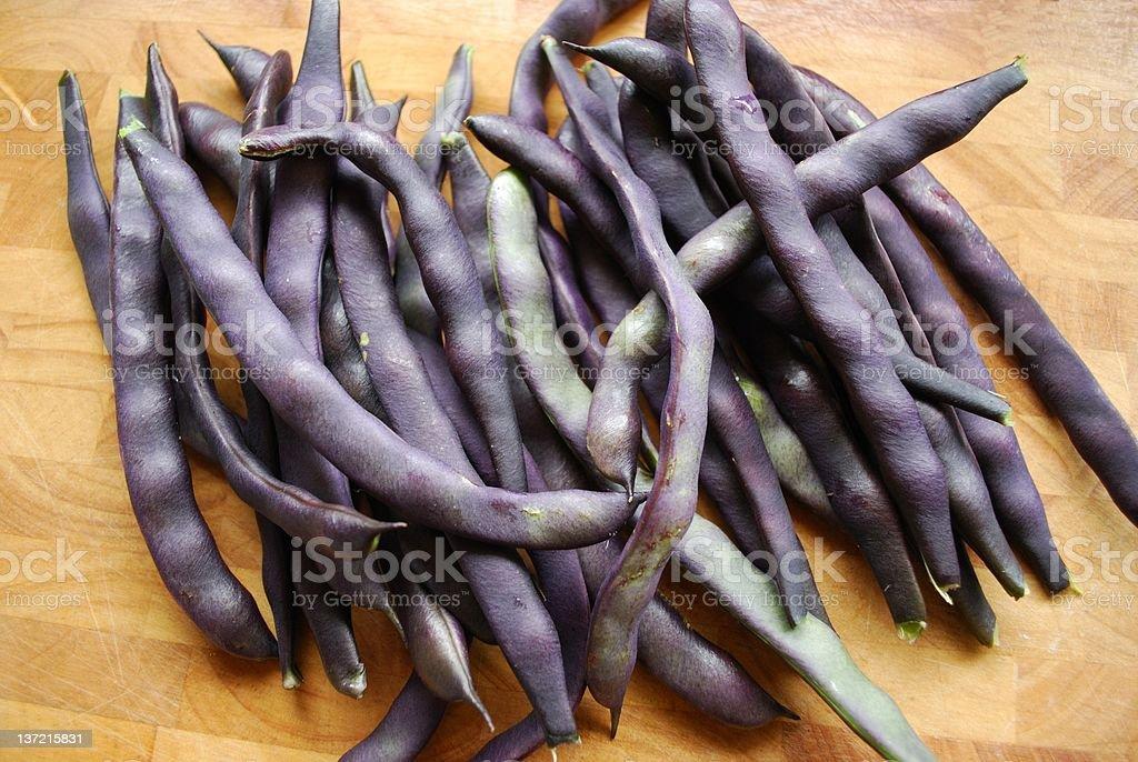 'Royal Burgundy' beans royalty-free stock photo