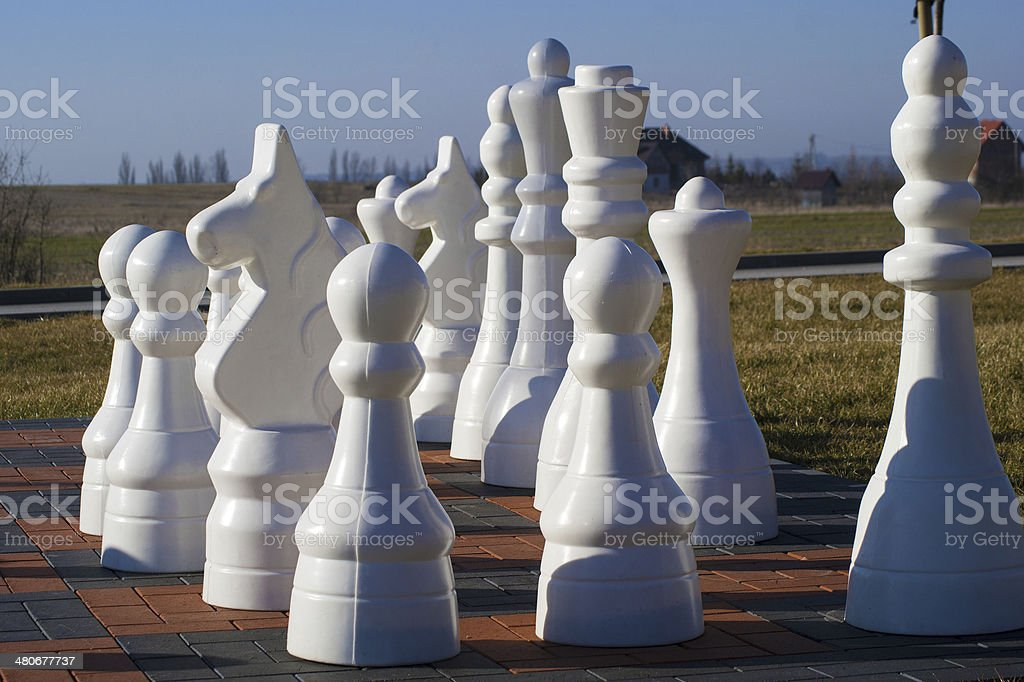 Royal Chess royalty-free stock photo