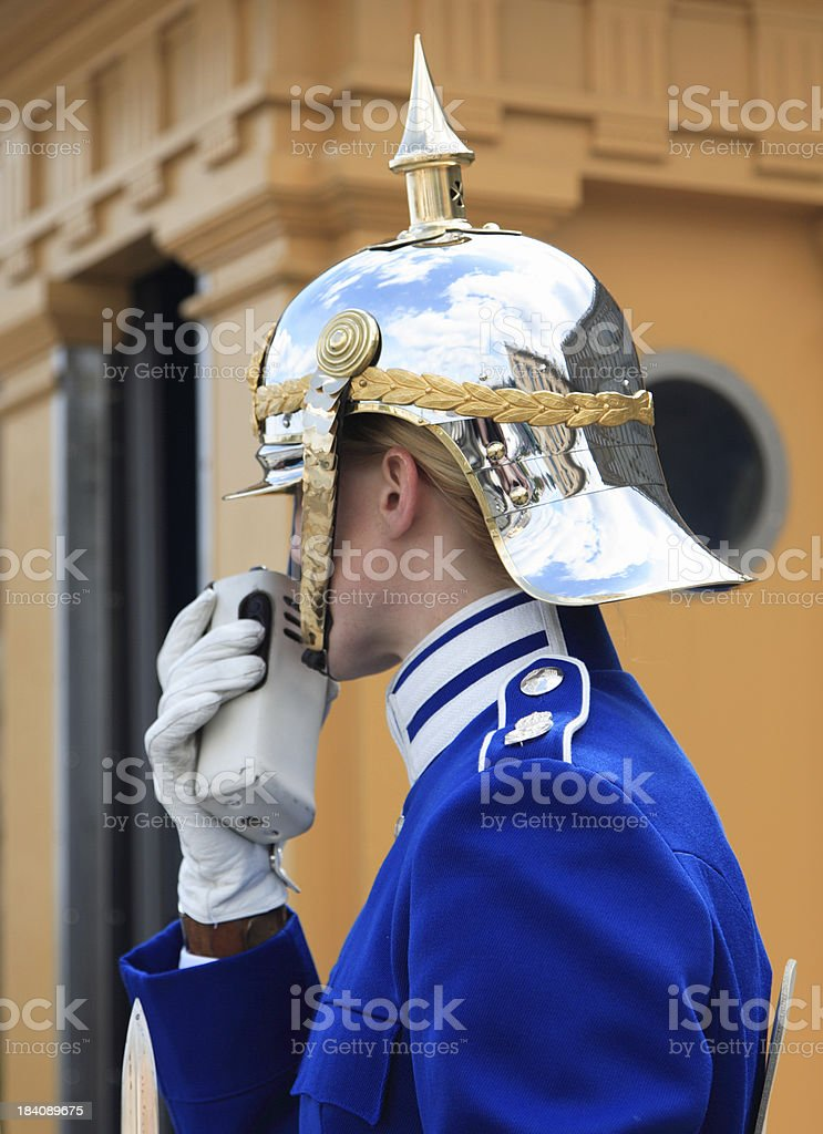 Royal guard on duty royalty-free stock photo