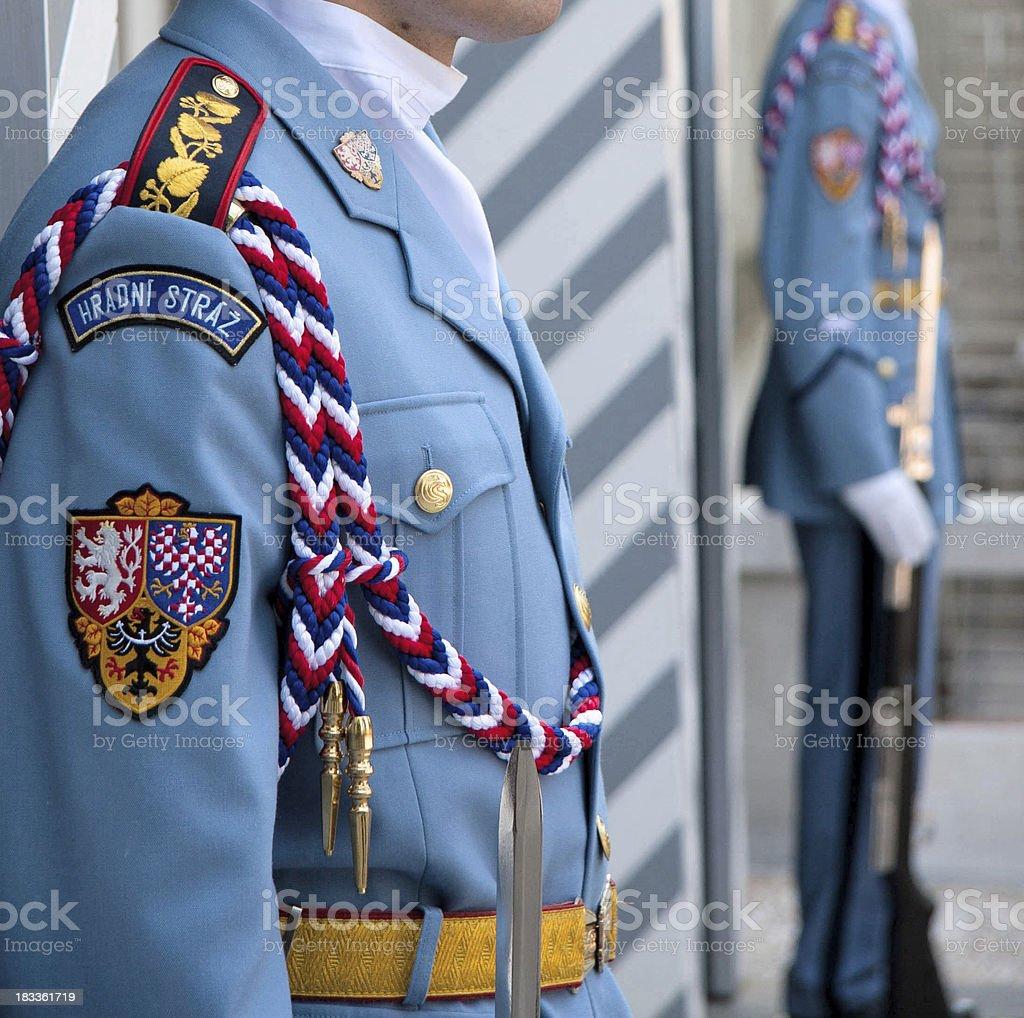 Royal Guards royalty-free stock photo