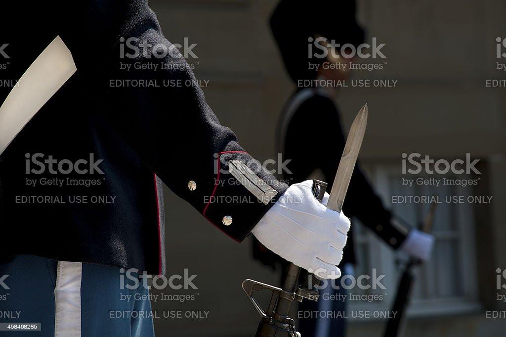 Royal Guardsmen royalty-free stock photo