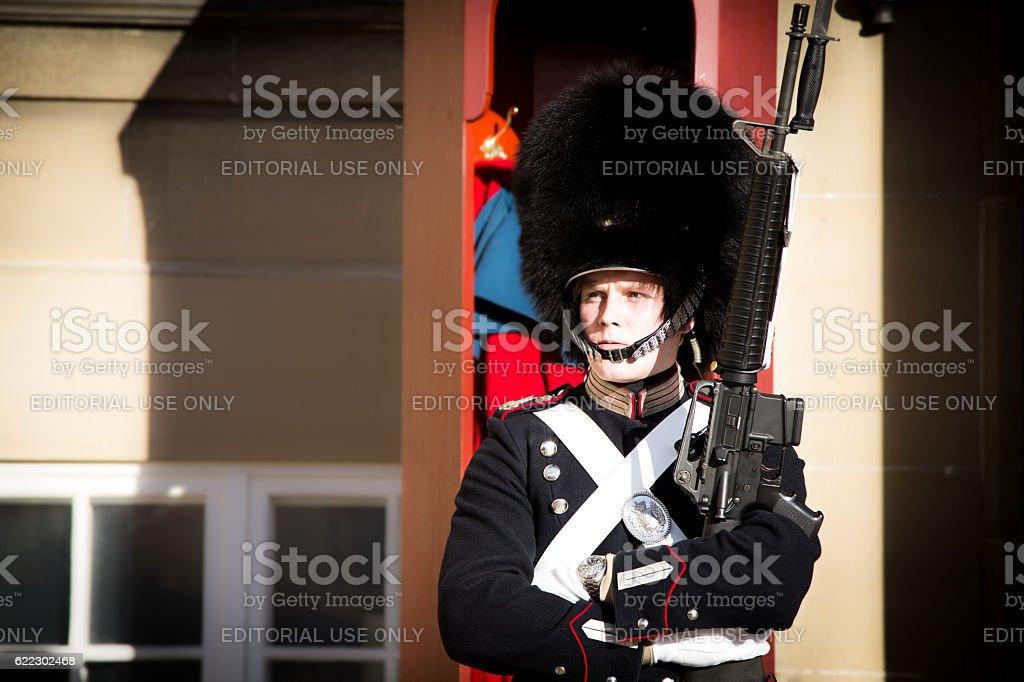 Royal Life Guard at Amalienborg Palace stock photo