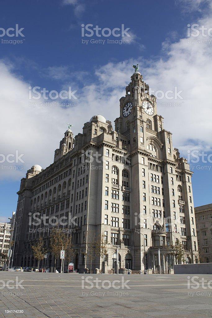 Royal Liver Building stock photo