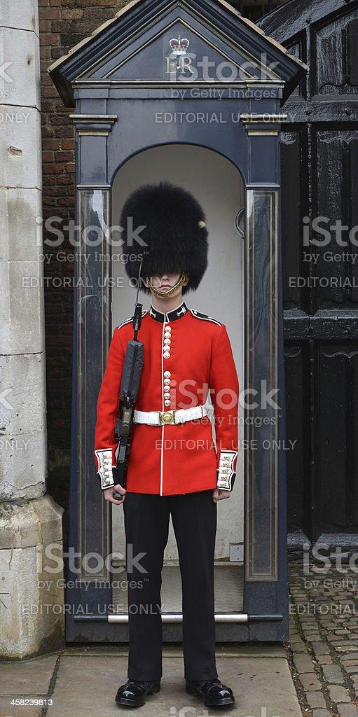 Royal Sentry stock photo