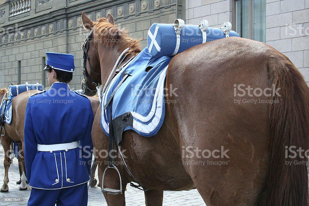 royal swedish guard stock photo