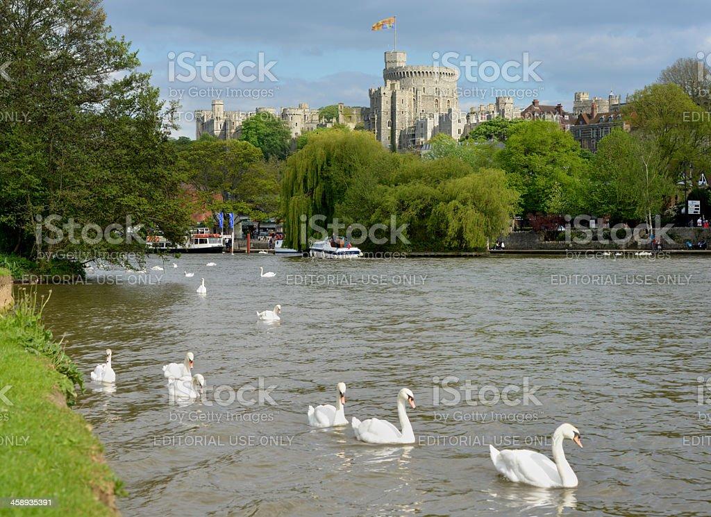 Royal Windsor stock photo