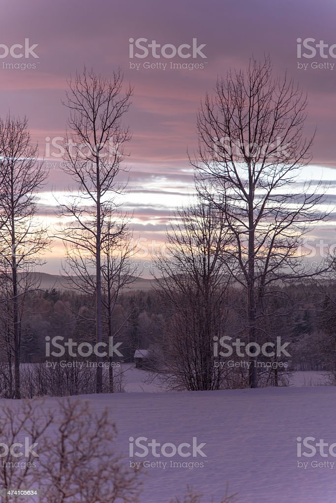 Rual winter evening stock photo