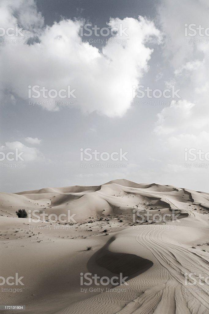 Rub' al-Khali Desert United Arab Emirates royalty-free stock photo