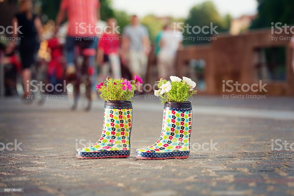 Rubber boots as flower pots stock photo