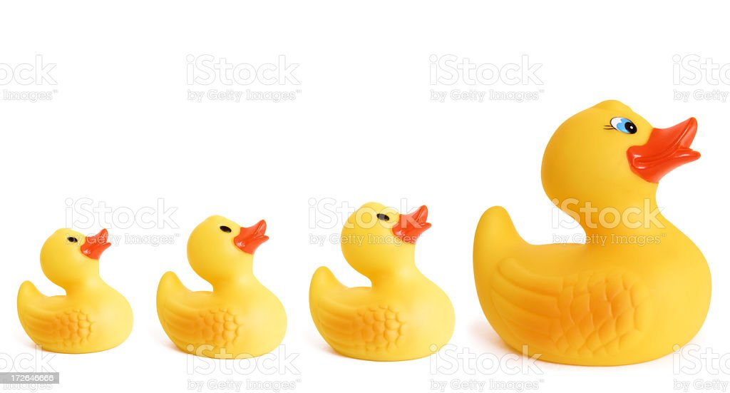 Rubber Duck Family royalty-free stock photo