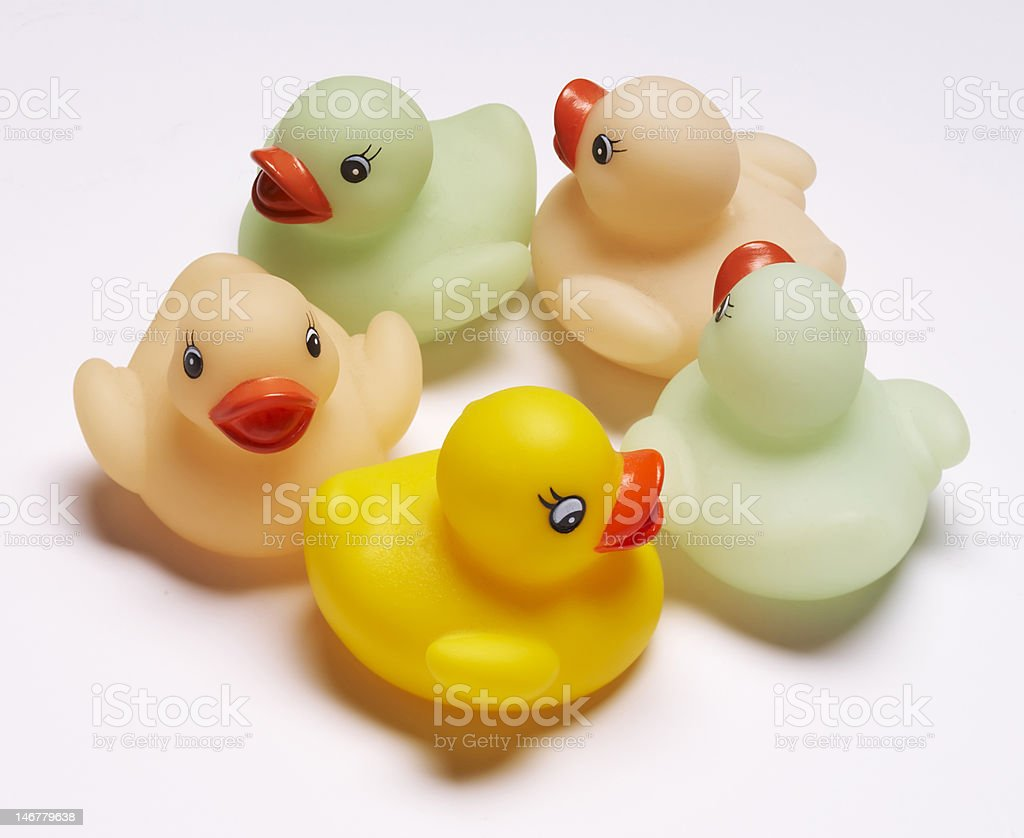 Rubber Ducks in a Circle royalty-free stock photo