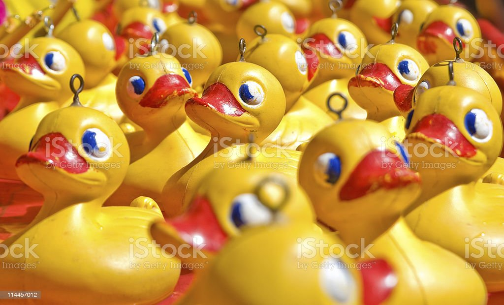 rubber ducky you are the one stock photo