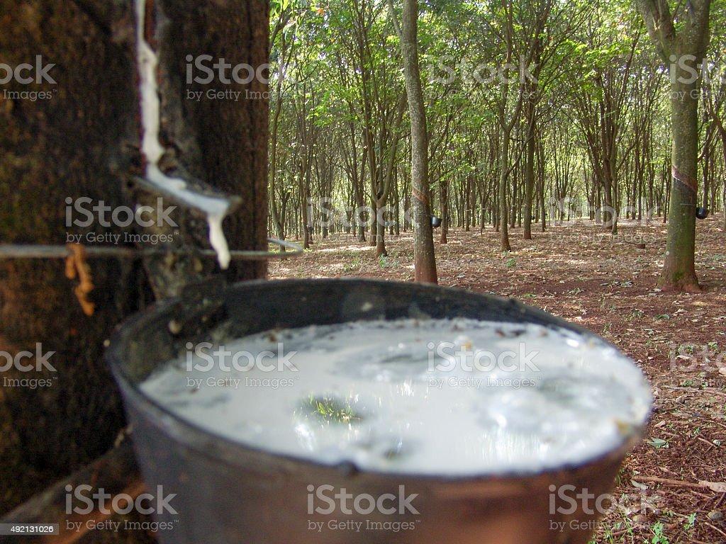 Rubber stock photo