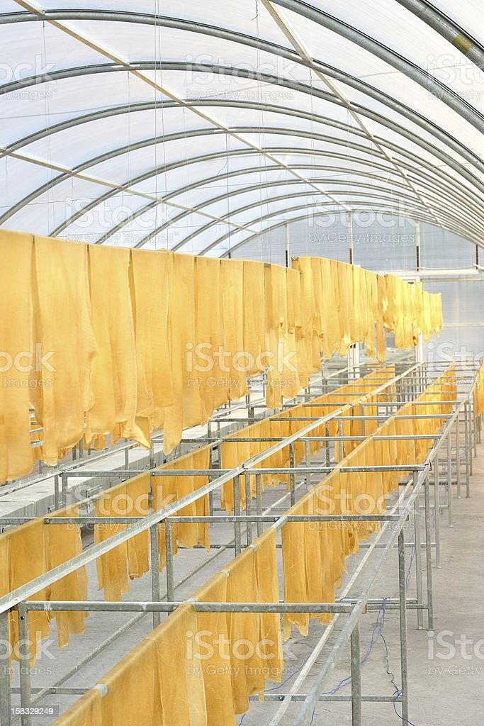 Rubber sheet in solar drying chamber royalty-free stock photo