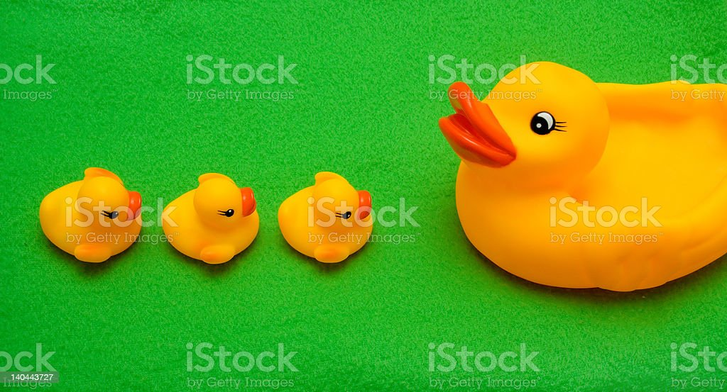 Rubber Toy duck family stock photo