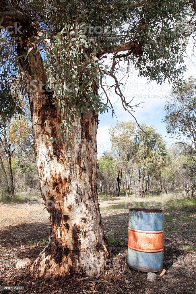 Rubbish Bin Under Tree stock photo
