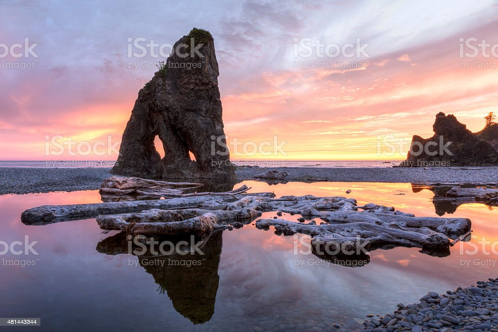 Ruby Beach Driftwood and Seastacks at Sunset stock photo