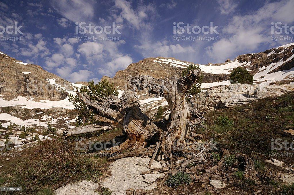 Ruby Mountains Island Lake Vista stock photo