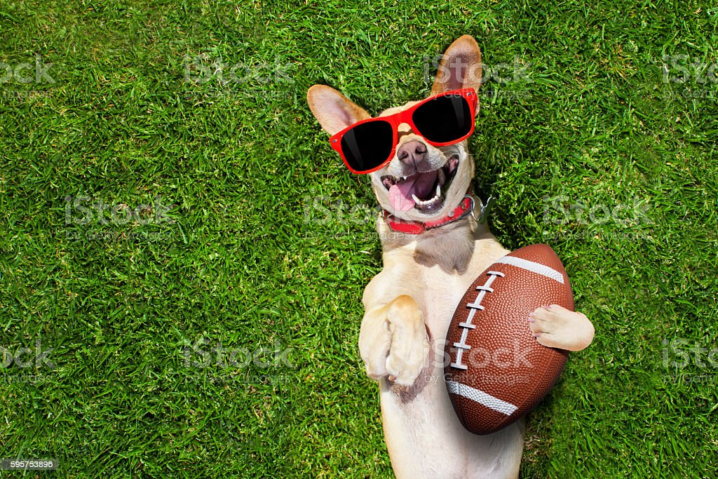 rugby soccer ball stock photo
