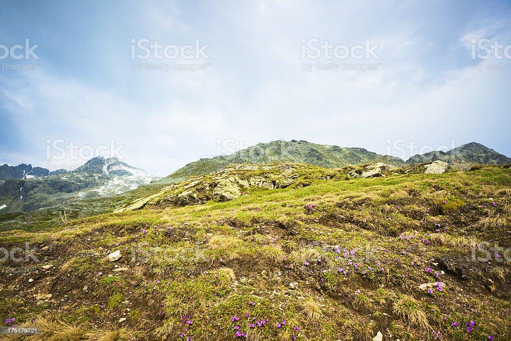 Rugged Alpine landscape stock photo