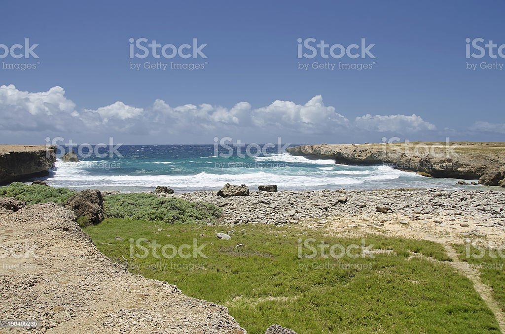 Rugged Coast royalty-free stock photo