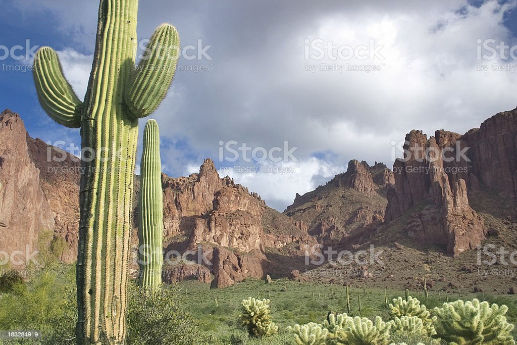 Rugged Desert  Landscape royalty-free stock photo