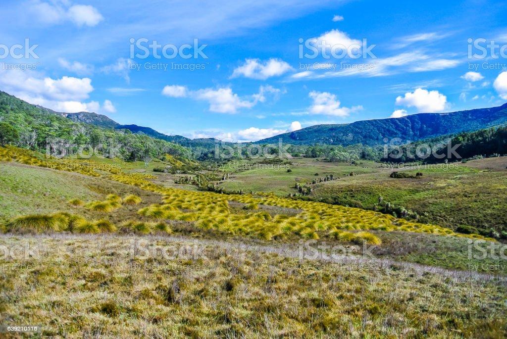 Rugged mountains and alpine heathlands at Cradle Mountain, Tasmania stock photo