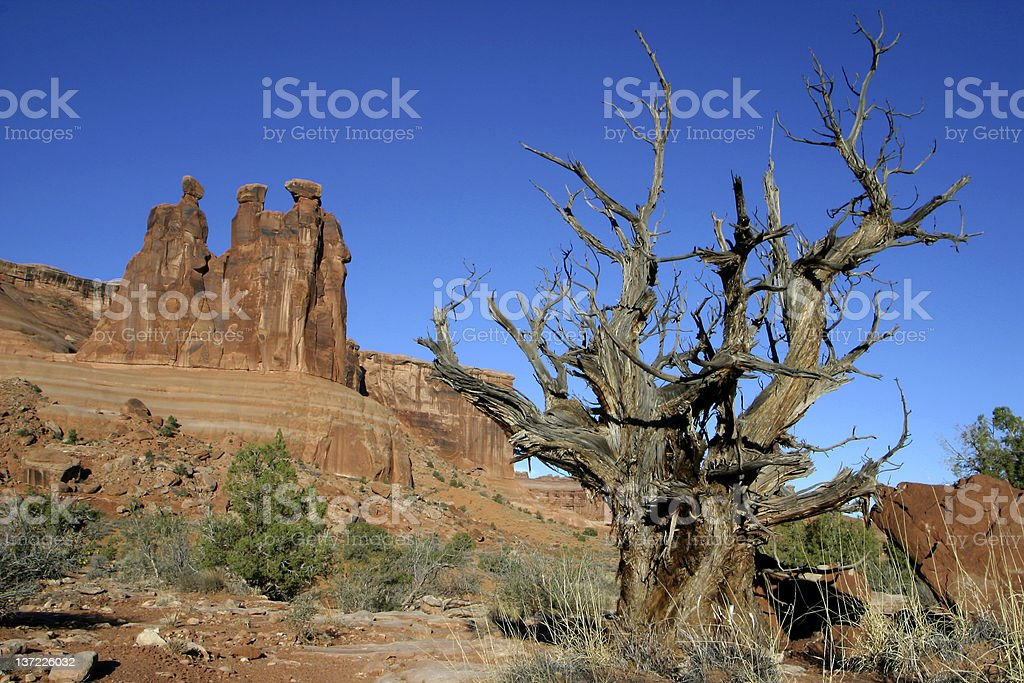 Rugged outdoors royalty-free stock photo