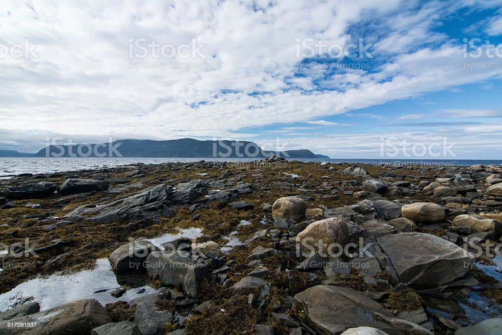 Rugged Rocky Newfoundland Coast stock photo