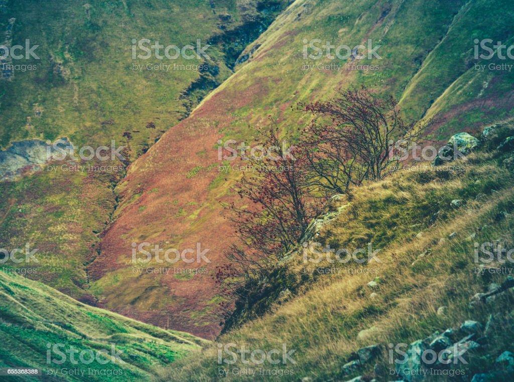 Rugged Scottish Hillside stock photo