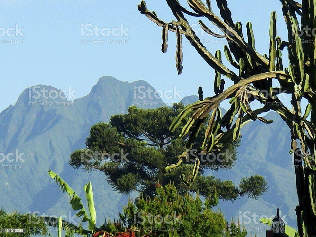 Ruhengeri Rwanda showing Sabyinyo Volcano in Virunga Mountains stock photo