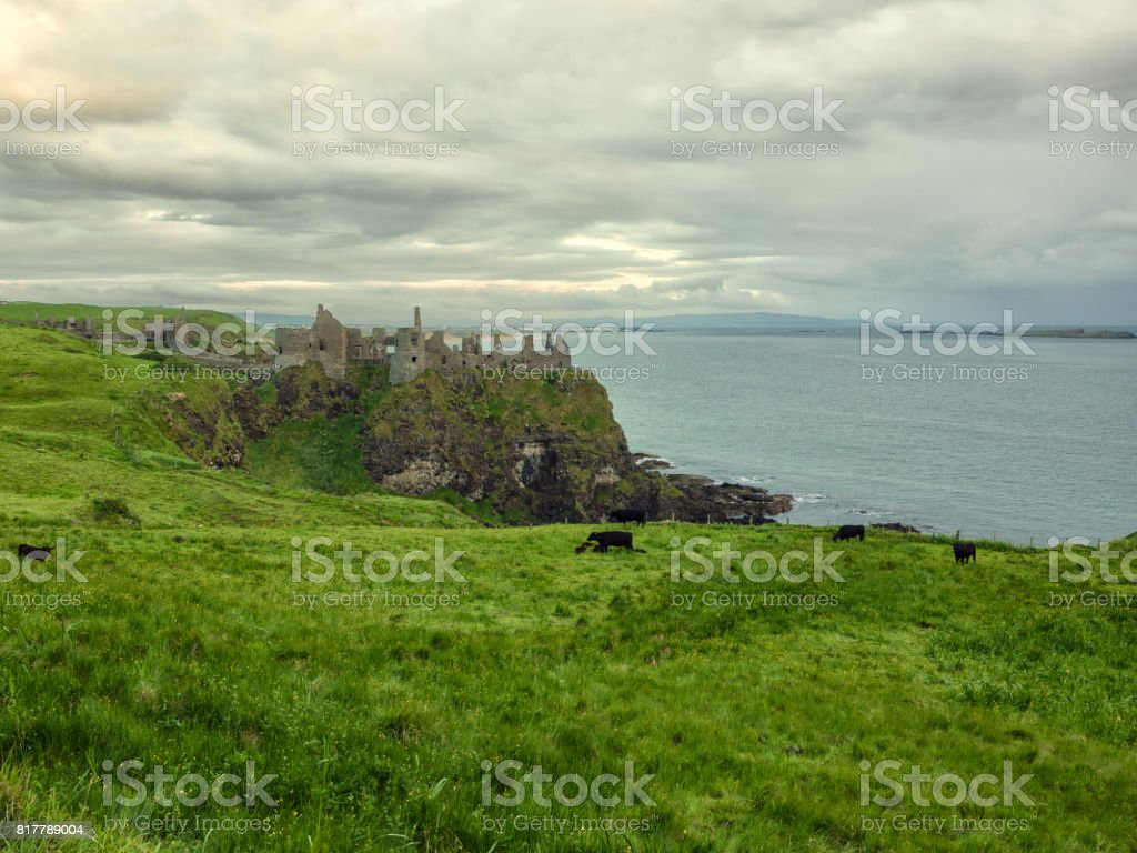 Ruin of Dunluce Castle,Northern Ireland stock photo