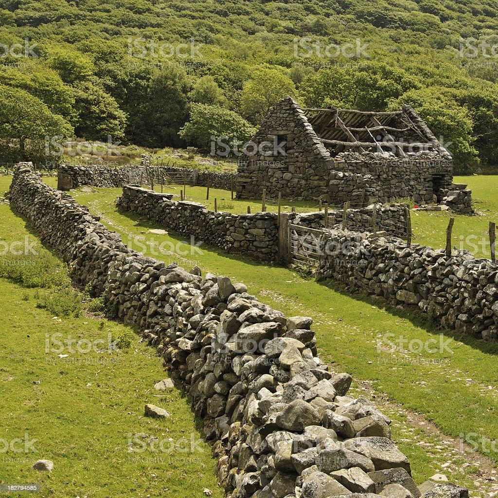 Ruined Barn stock photo
