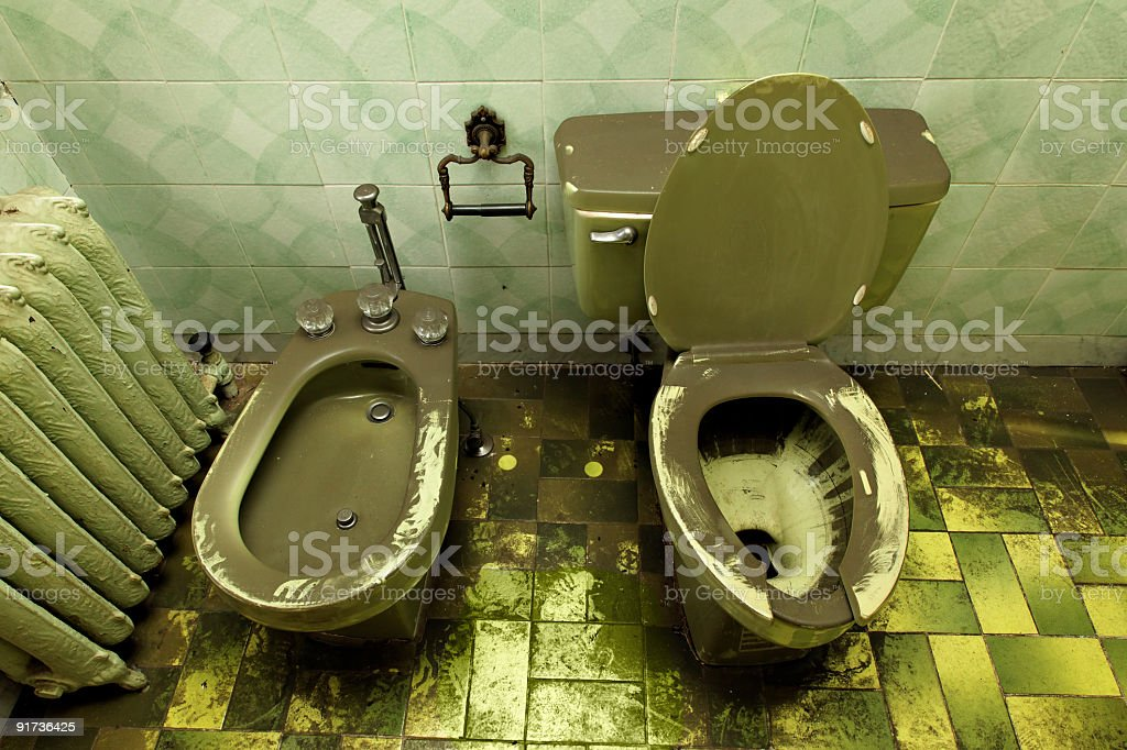 Ruined decrepit loo toilet and bidet stock photo
