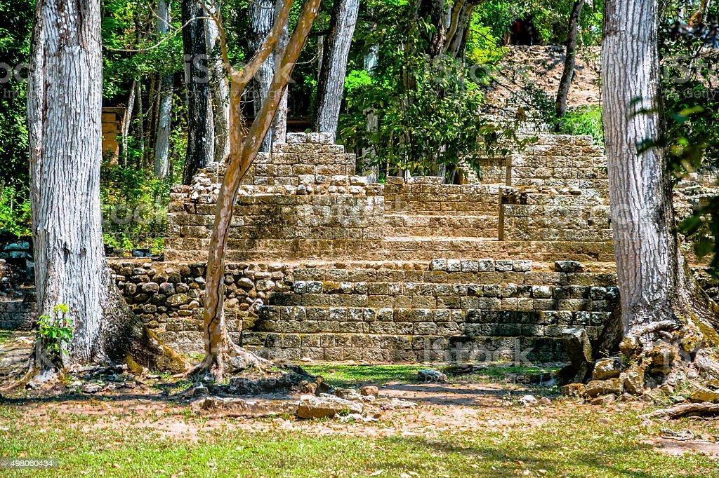 Ruined Maya Pyramid stock photo