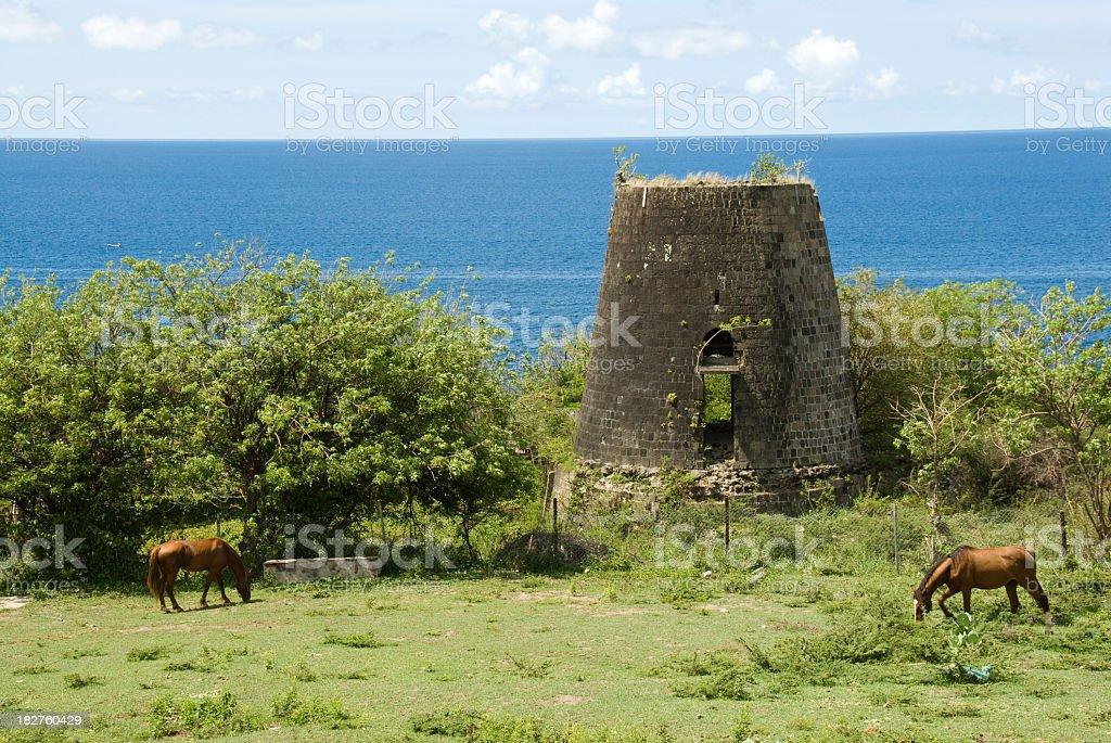 Ruined Sugar Mill St Kitts stock photo