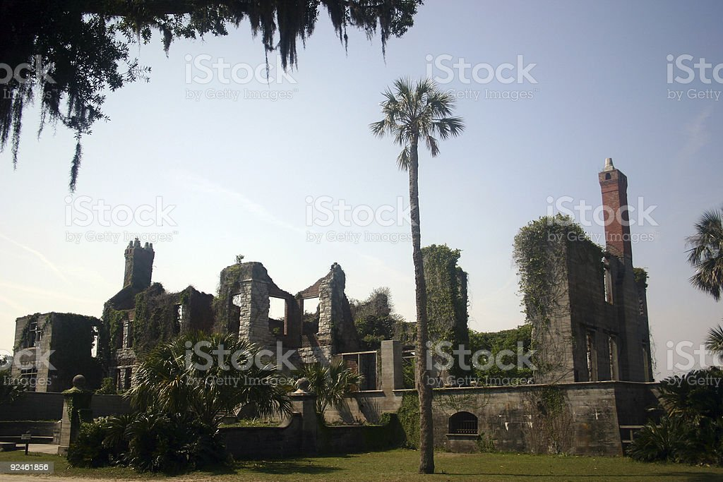 ruins and palm tree stock photo