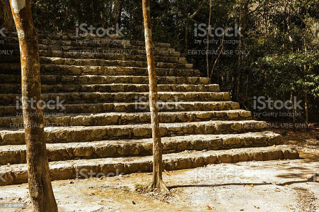 Ruins at Coba Archeological Park, Tulum, Mexico. stock photo
