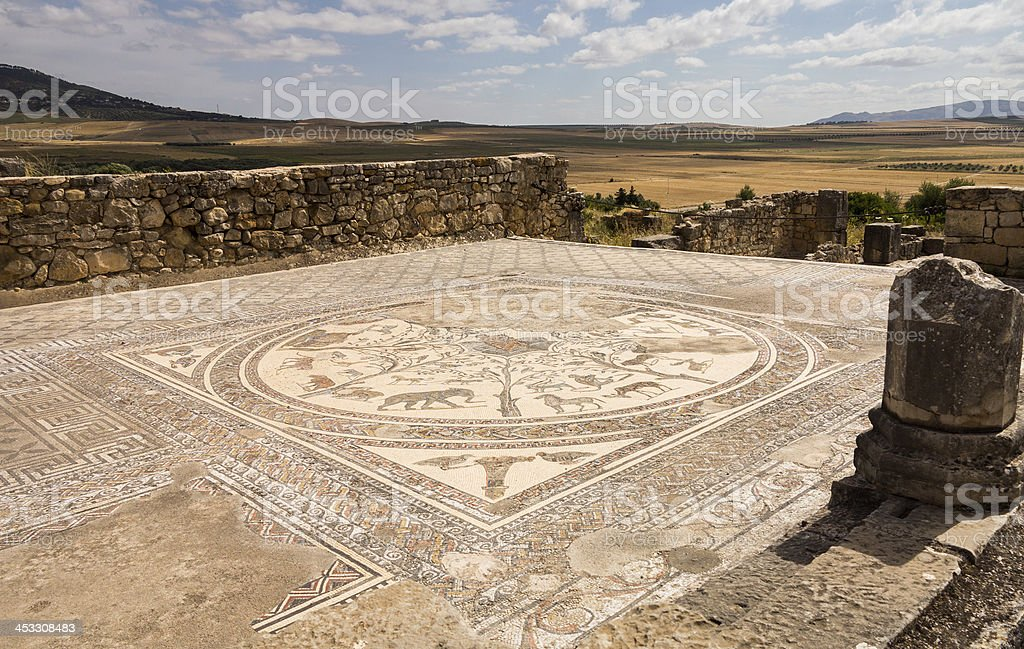 Ruins at Volubilis Morocco stock photo