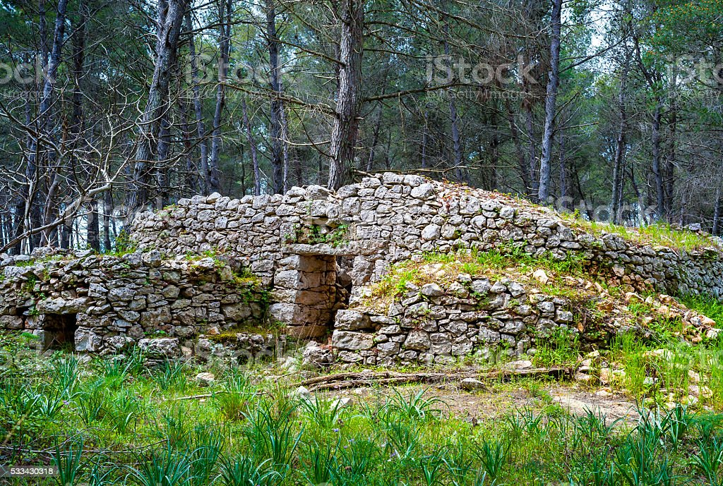 ruins of a stone building in the woods stock photo