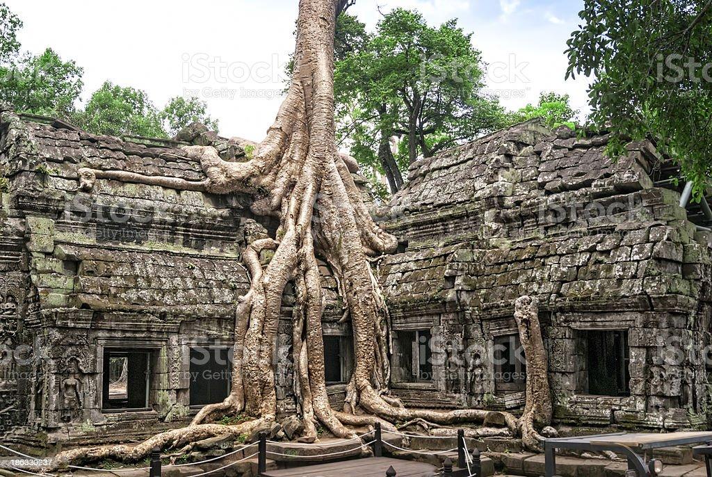Ruins of Angkor Wat royalty-free stock photo